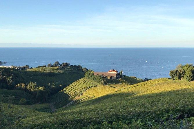 Txakoli Weingut Tour durch die Küste von San Sebastian