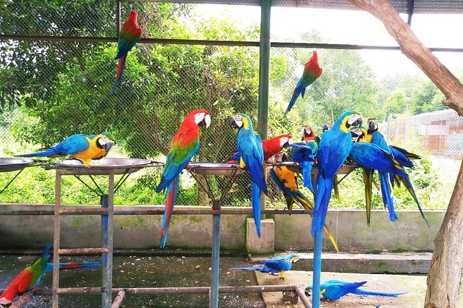 Gazipur Safari Park Day Tour