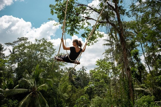 Bali Secret Cycling Tour Above Ubud, Jungle-Swing, Waterfall and Temple photo 11