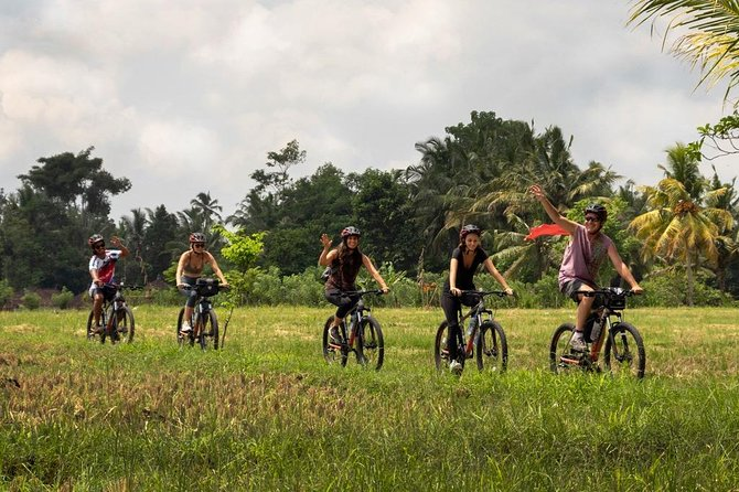 Bali Secret Cycling Tour Above Ubud, Jungle-Swing, Waterfall and Temple photo 20