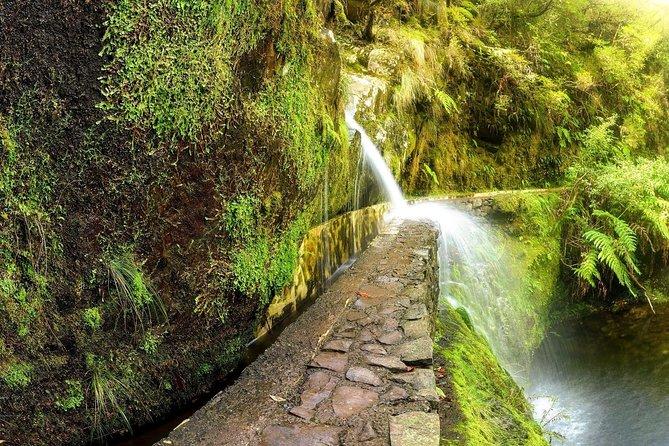 Walk Ribeiro Frio to Portela - The most amazing trek