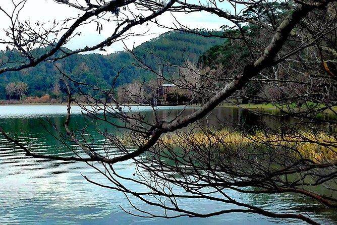 Furnas Lake Hotsprings and Gardens Van Tour