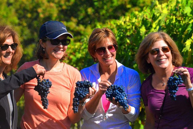 Small Group Wine Tour in Chianti (Tuscany) included 2 winery and San Gimignano