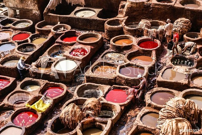 Full day tour in fes medina photo 1
