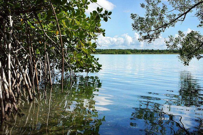 Bacalar Seven Color Lagoon & Kayak Adventure from Costa Maya photo 11