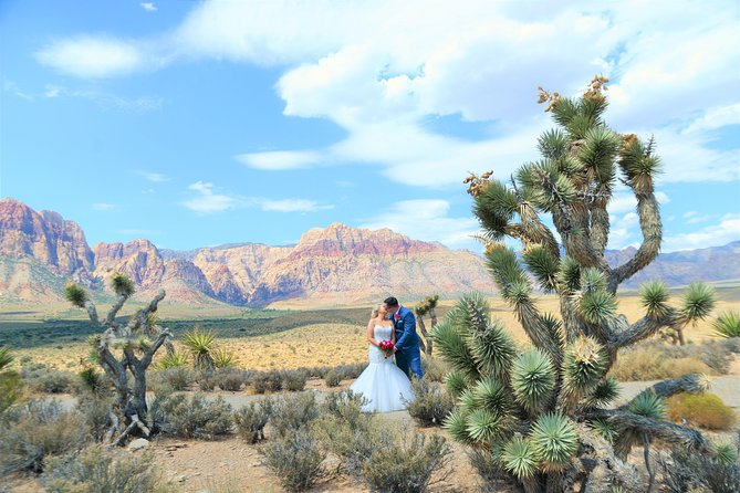 Red Rock Canyon Wedding by Private Limousine photo 3