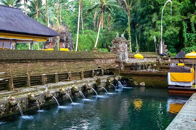 Ubud Shared Tour: 2 Waterfalls - Tegalalang Rice Terraces - Holy Water Temple