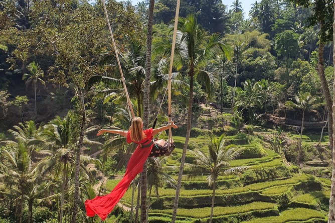 Ubud Shared Tour: Ubud Waterfalls, Tegalalang & Holy Water Temple