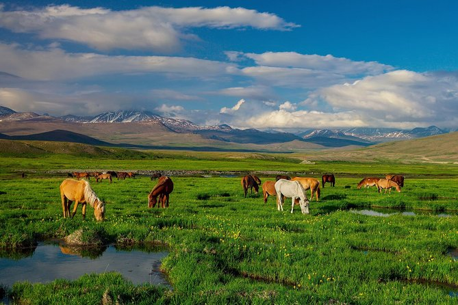 07 Days - Tour To Skardu Deosai National Park Pakistan photo 2
