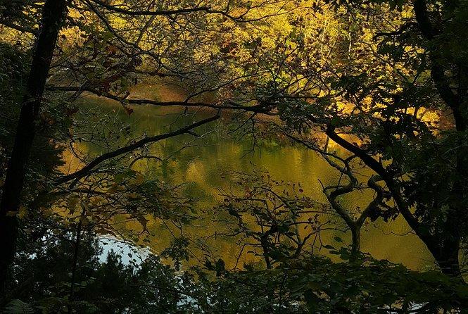 Belgrad Forest Trekking Tour (Belgrad Ormanı)