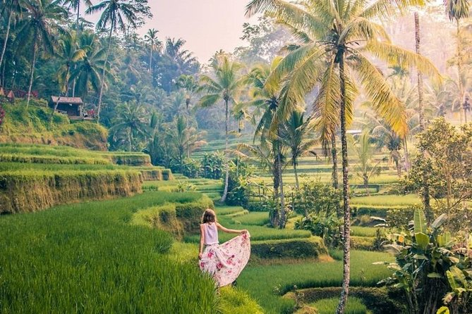 Ubud Bali : Monkey Forest - Rice Terrace - Water Temple - Waterfall