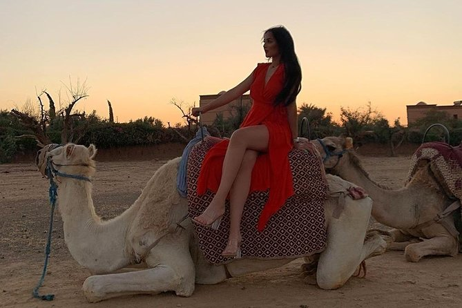 Pack Camel ride 1 Hour and Quad biking 2 Hours in Marrakech