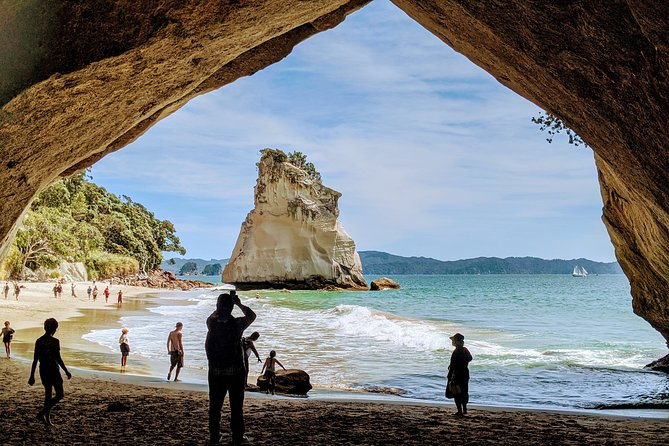 Auckland to Coromandel - Private tour