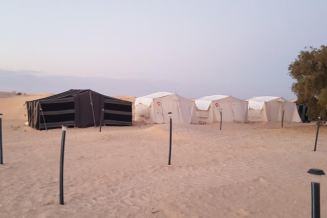 2-Day Tunisia Sahara Desert Camel Trek from Douz