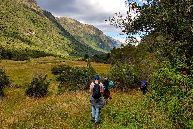 Hike El Cajas - Beyond the Common Trail