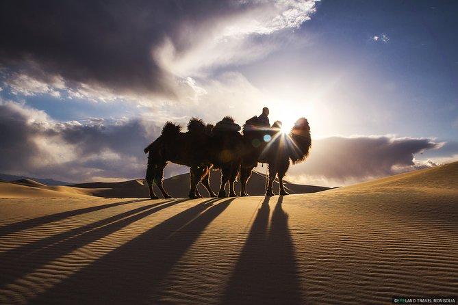 Discover Mongolian Gobi