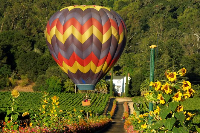 Experience our Thrilling Napa Hot-Air Balloon Ride over California Wine Country