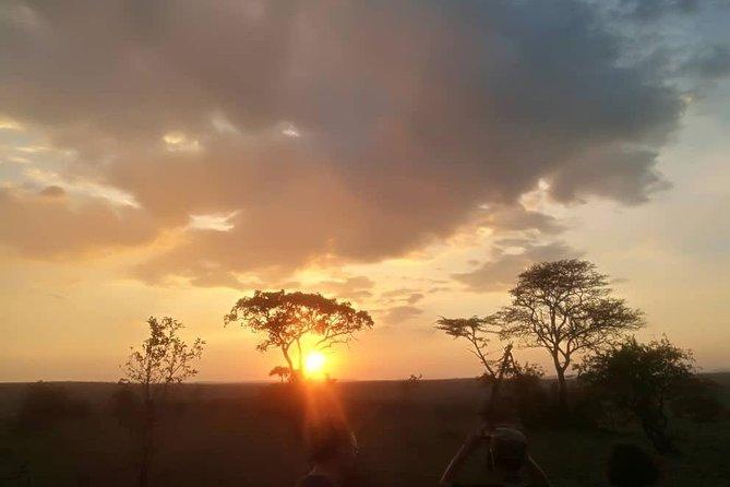 3 nights 4 days safari for camping Tarangire-serengeti-Ngorongoro crater