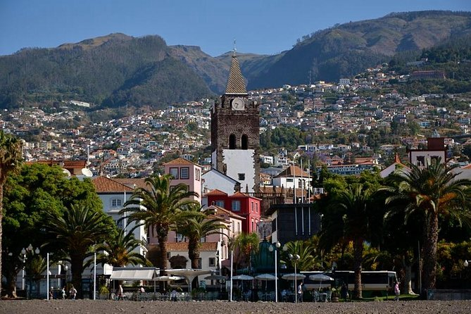Madeira: Private Transfer to or from Caniçal