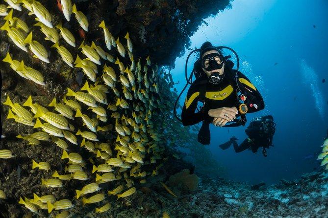 Scuba Diving in Andaman (Open Water PADI Certified)