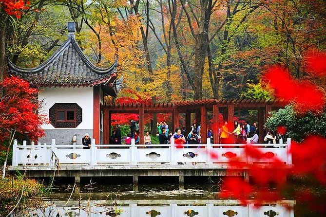 Nanjing Purple Mountain Private Tour with Tangshan Hot Spring Spa Experience