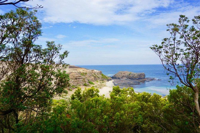 Mornington Peninsula Coastal Walk & Hot Springs Day Tour photo 4