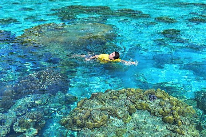 Surin Islands Snorkeling Day Trip By Love Andaman From Phuket photo 8