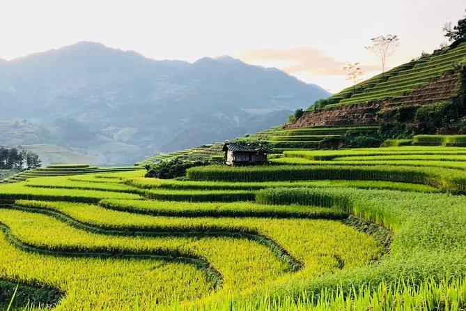 Trekking SaPa 1 Day - the best terraced rice field
