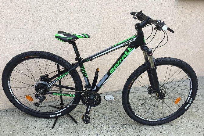Half day teen mountain bike rental