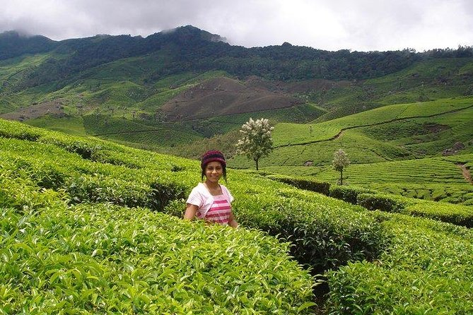 MUNNAR Tour Package (3 Days) - (Given Price is valid for Min 2 Bookings & above)