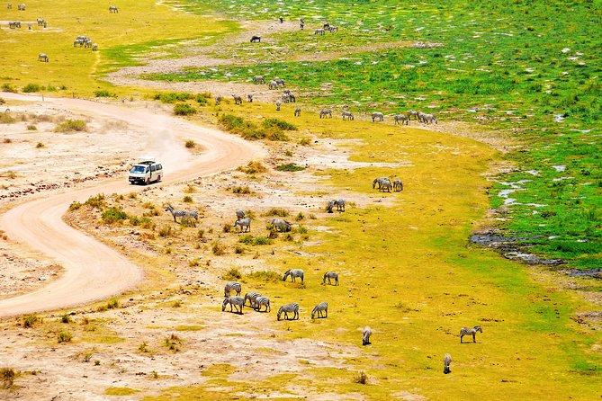 2 Days Amboseli Getaway Trip