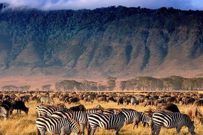3-Day Serengeti & Ngorongoro Crater safari