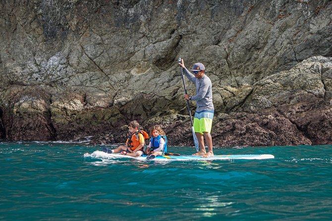 Coastline Paddle Board Tour