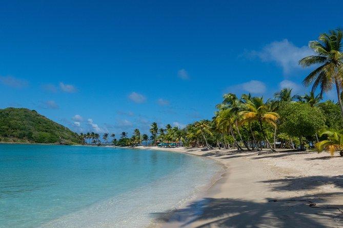 Island Life : Day Tour