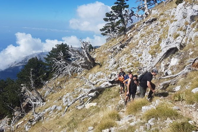 Hiking tour of South Albania in four days photo 7