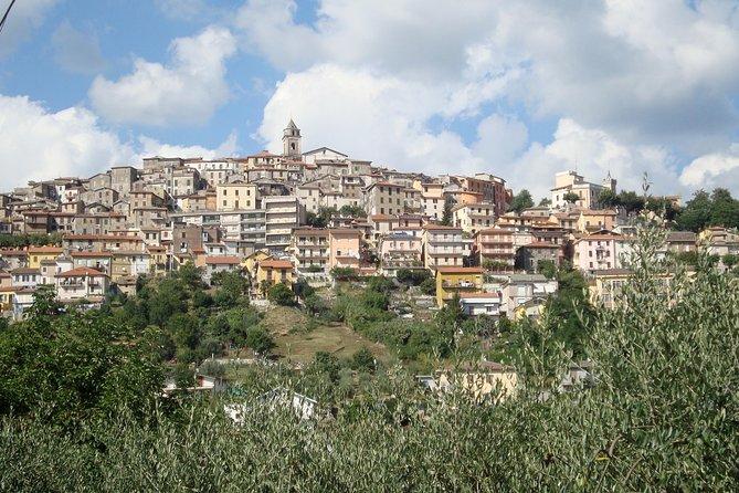 نقل خصوصي : من مدينة روما إلى مدينة فيوجي و العكس