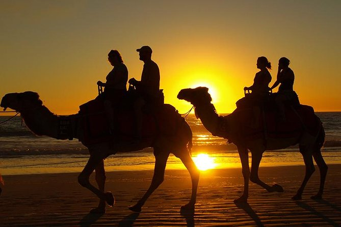 Guided Agadir Sunset Camel Ride and Dinner photo 8
