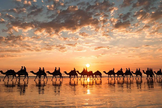 Guided Agadir Sunset Camel Ride and Dinner photo 10