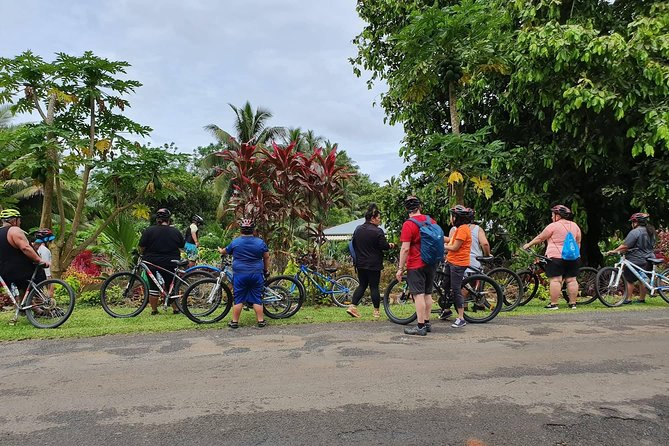 'Discover' Rarotonga Cycling Tour with Lunch photo 4