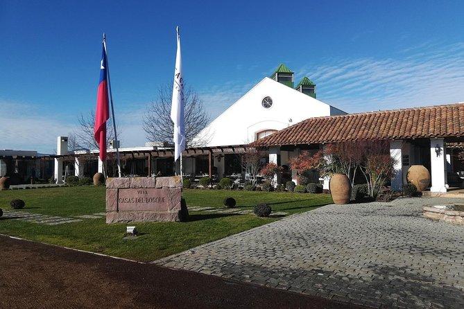 Aromas Viña Casas del Bosque Tour from Santiago (half day)