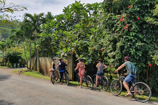 'Discover' Rarotonga Cycling Tour with Lunch photo 1
