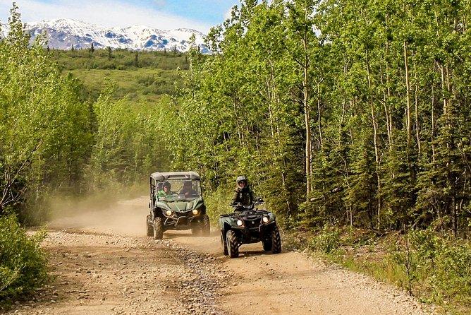 2,5-timmars Denali Wilderness ATV Adventure Tour