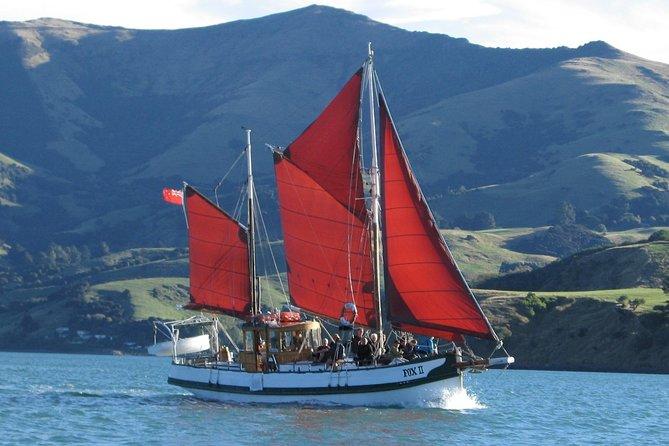 Sailing and Wildlife Tour Akaroa Fox II Sailing