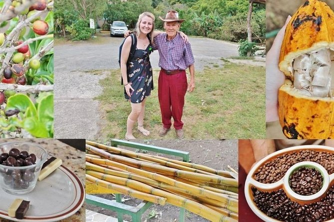 Monteverde Cloud Forest Coffee, Chocolate and Sugar Cane Tour photo 6