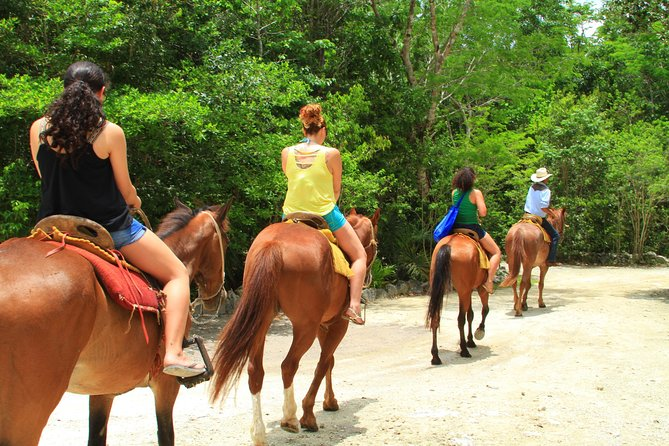 ATV tour, zip lines and cenote the best Eco Park Cancun adventure photo 12
