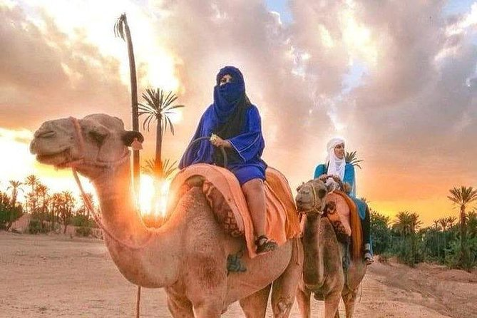 AUTHENTIC From Fes to Marrakech via Desert tour - 4 days 3 nights | Safe Driving