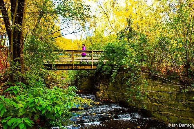 Explore Toronto's Secret Ravines