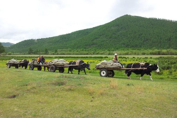 12 Days EXPLORE THE BEAUTY OF NORTHERN MONGOLIA WITH DANSHIG RELIGIOUS