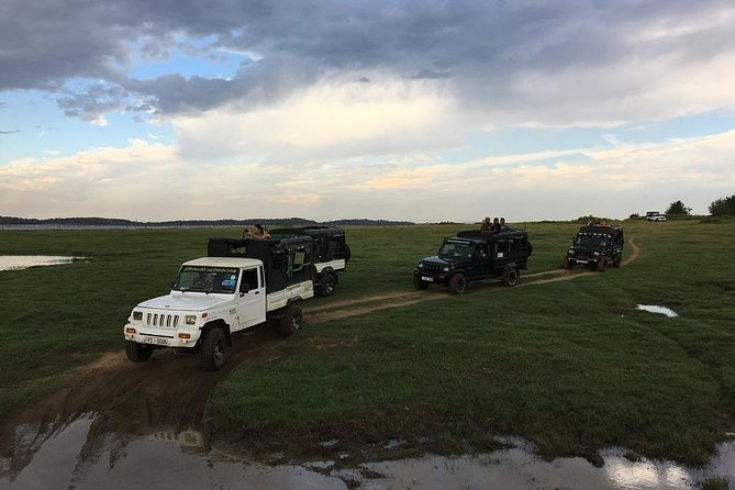 Private Jeep Safari - Kawdulla National Park