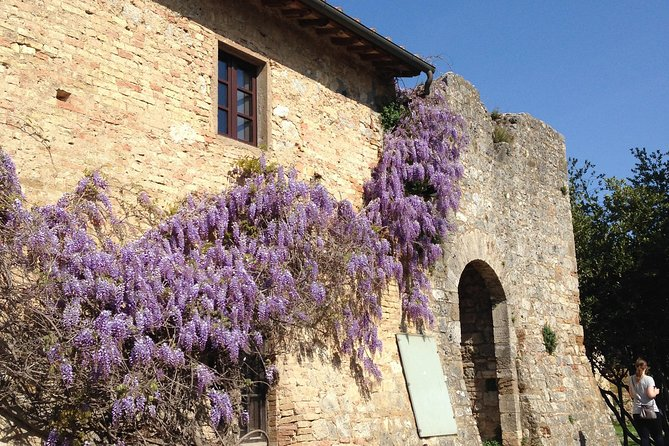 Exclusive Private tour To Siena and San Gimignano and possible Wine Chianti photo 1